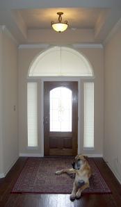Front door entry way with honeycomb shades